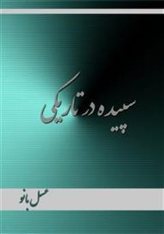 کتاب رمان سپیده در تاریکی
