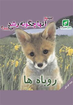 کتاب ببینید روباه ها چگونه رشد میکنند؟