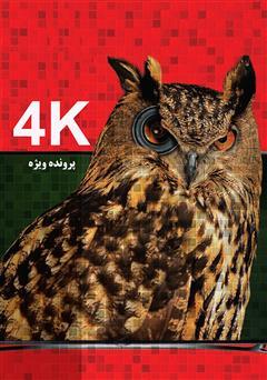 کتاب 4K
