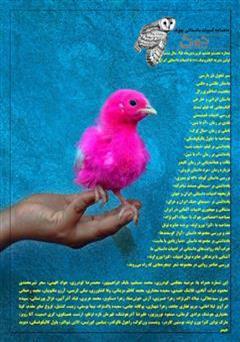 ماهنامه ادبیات داستانی چوک - شماره 68