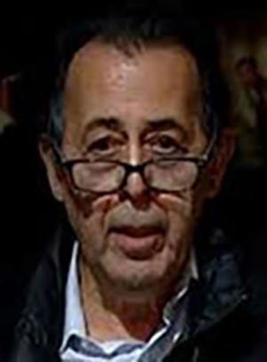 محمدقلی مجد