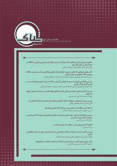 دانلود نشریه علمی تخصصی شباک - شماره 42
