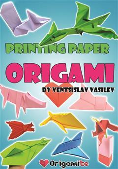 دانلود کتاب Origami Book