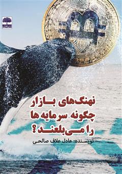 دانلود کتاب نهنگهای بازار چگونه سرمایهها را میبلعند؟