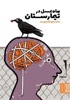 دانلود کتاب ماه عسل در تیمارستان